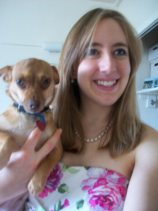 All dressed up for my audition for Legally Blonde, and it seemed like a chihuahua was an appropriate accessory.