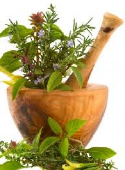Herbal Medicine and its place in therapy