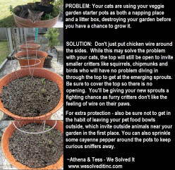PESKY PET GARDENING SOLUTION