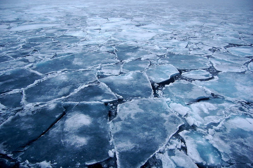 Arctic sea ice, 2009.  Photo by Pink floyd88 a.  Image courtesy Wikimedia Commons and the author.