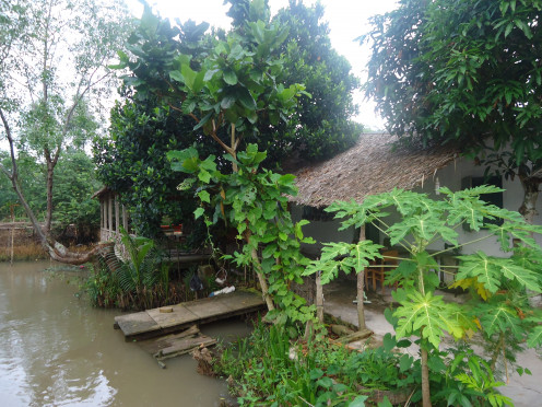 Our Mekong Delta Homestay