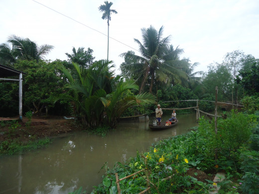 Mekong Delta pictures: Locals fishing