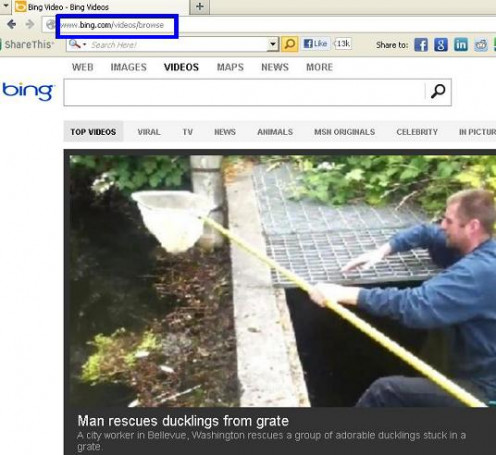 bing video browse