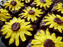 Sunflower Brownies