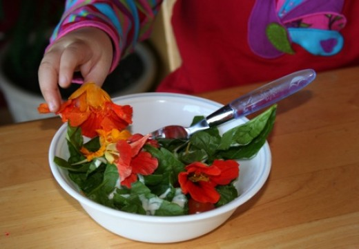 Have a bowl of edible flowers, it's delicious.