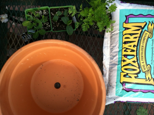 A container, soil and seedlings and/or seeds is all you need!