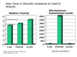 Effects of Fluoride in Public Water