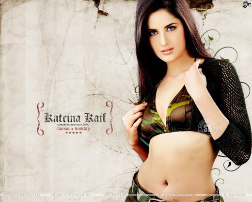Katrina Kaif in Hot Bikini Wallpaper
