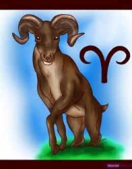 The Aries Ram