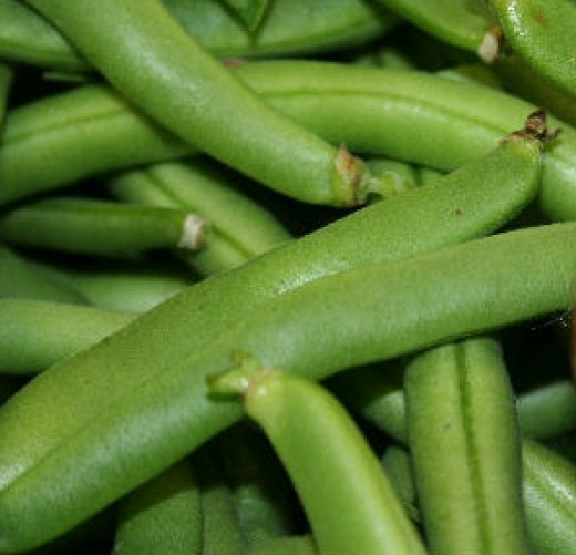 Organic green beans from my garden.