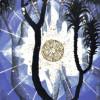 venusinfurs1 profile image