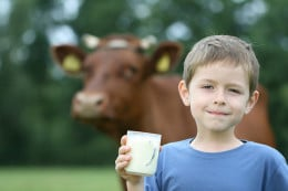 Milk is not as good as we were brought up to believe.