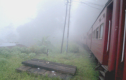 The train chugging through the morning mist...
