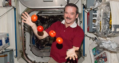 Do South Koreans want to juggle tomoatoes in outer space like the ISS astronaut on Expedition 35?