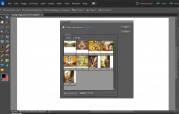 You can place PDF, Illustrator, EPS, JPEG or PNG file on Photoshop Elements document