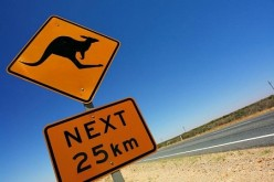 Immigration to Australia – Five Reasons why you should consider Migration Australia
