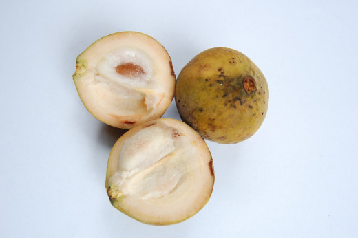 santol vinegar Fruits that are suitable for pickling are mango, siniguelas, kamias, papaya, and santol instructions 1 use only firm, fresh, unbruised, and underripe fruits 2 .