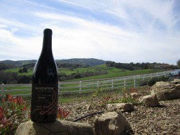 Hearthstone Vineyard in Paso Robles, California