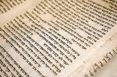 ancient Torah scrolls