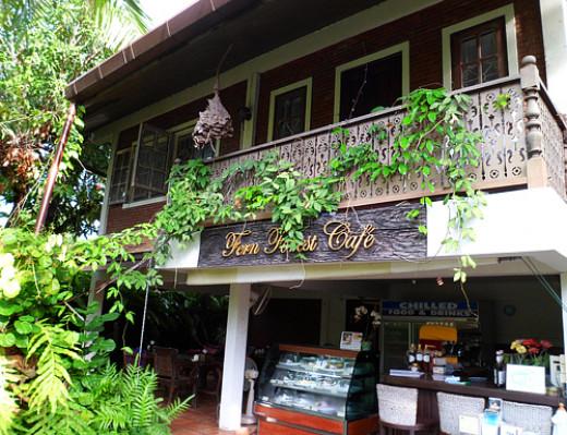 Entrance to Fern Forest Cafe