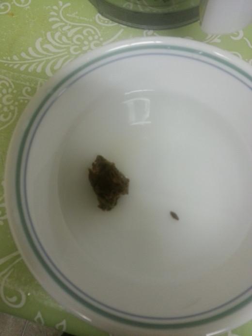 Soak Tamarind in water