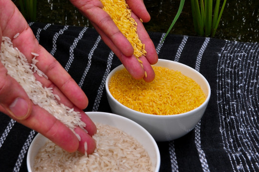Golden rice at your left compared to white rice