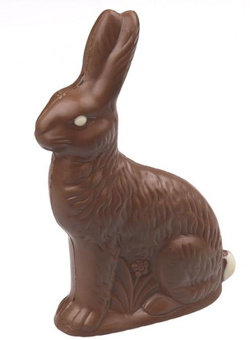 Chocolate Easter bunny.