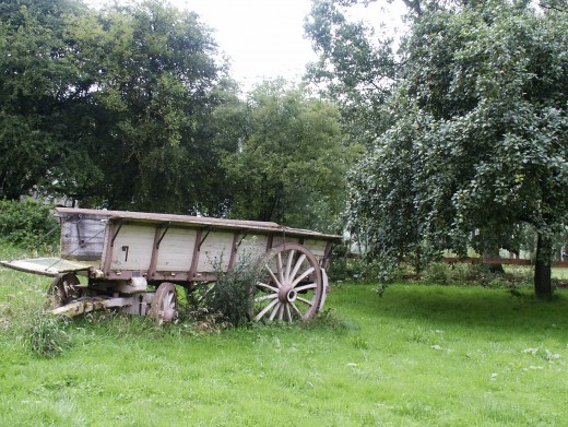 An old French cart.  A wonderful feature for a large garden