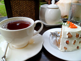Tea and carrot cake at Fern Forest Cafe