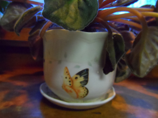Lenox butterfy cup