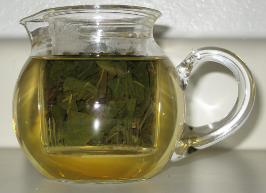 A small tea pot filled with Oolong leaves
