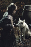 Literary Devices in Game of Thrones