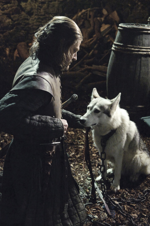 Ned Stark and the direwolf, Lady