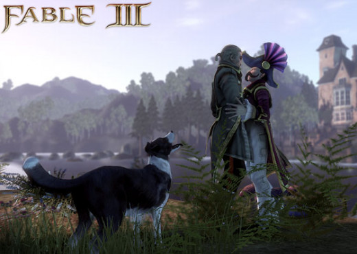 Fable is one of the most popular series that allow your character to marry one of the same gender.