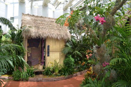 One of the neat educational displays in the Madagascar Orchid show.  A native hut with orchids.