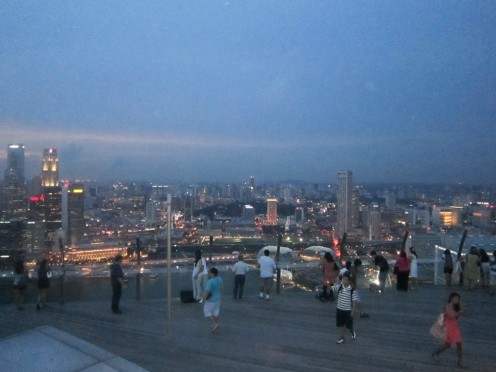 View of Singapore from the Skypark