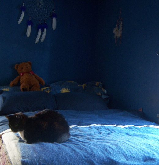 The dream catchers over our bed were gifts, but the color scheme was our own. Our kitties seem pretty happy with it, too.