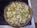 The Best Ever Homemade Apple Pie