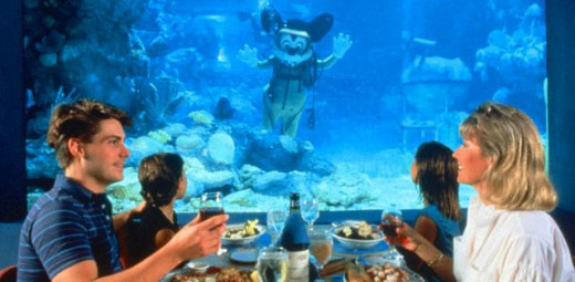 You never know who you might see! The Coral Reef Restaurant in EPCOT