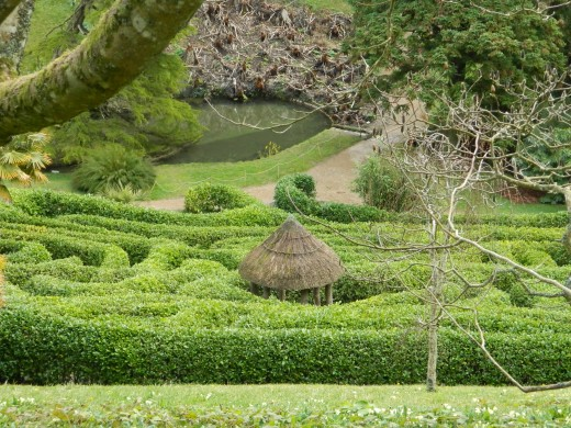 Have fun getting lost in an English Maze!