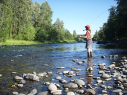 Online fly fishing store