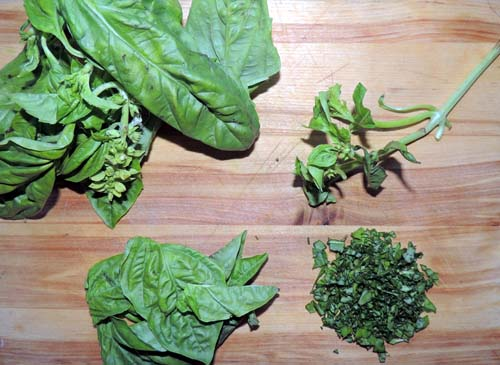 Basil-left to right, top to bottom--prep