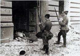 "May 1943.  Original German Caption read, ""Askaris used during the operation."""