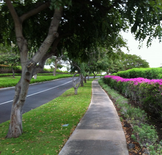 Part of 2-Mile Walkway from Hilton Waikoloa to Queen Ka'ahumanu Highway