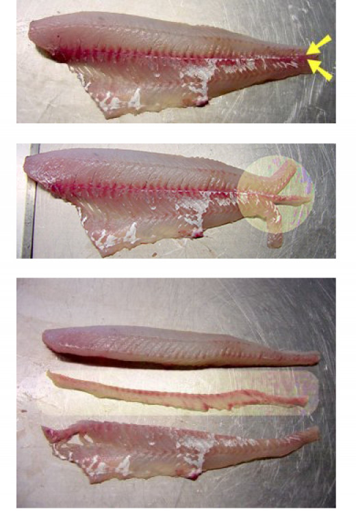 Removing The Lateral Line