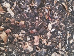 Adding sawdust to your soil is one way to increase the organic matter and tilth of the soil, but there are better ways.
