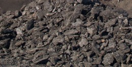 Lignite coal is an important source for humus.  It is being used in commercial agriculture to boost plant growth.