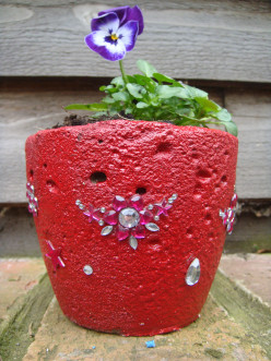 Make Your Own Concrete Planter