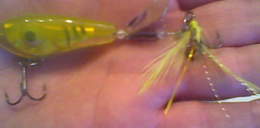 This 1/2-ounce Mango Revolution spinner not only lured the above smallmouth but also several nice hybrid striped bass.