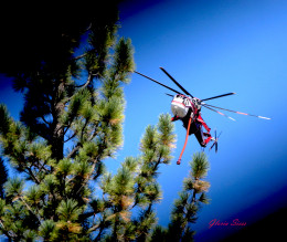 The pilot must navigate through heavy forest cover to drop water and flame retardant.